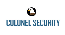 defence and security website