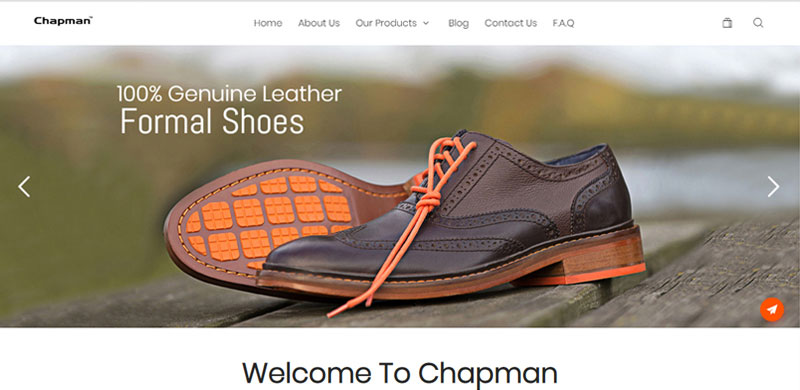 shoes ecommerce website on wordpress